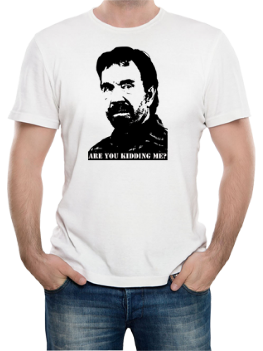 Camiseta Chuck Norris - Are you Kidding me?